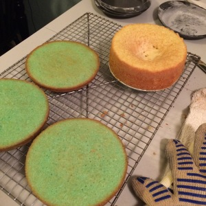 single cake layers compared to spring form cake pan
