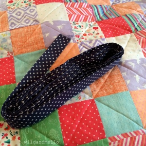 Blue And White Polka Dot Trim